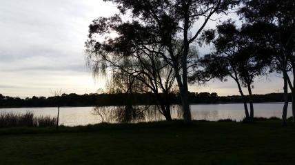 One cloudy morning at Lake Ginninderra