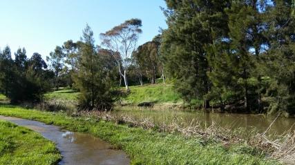 Ginninderra Creek just east of Copland Drive